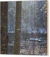 Sunbreak On A Snowy Day Wood Print