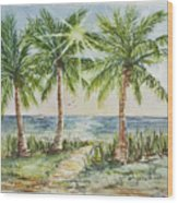 Sunburst Beach Morning Wood Print