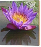Sunburst Lily Wood Print