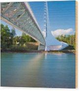 Sundial Bridge 1 Wood Print