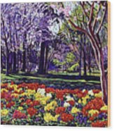 Sunday In The Park Wood Print by David Lloyd Glover