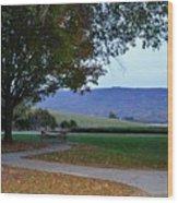 Sundown At Blue Ridge Wood Print