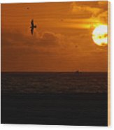 Sundown Flight Wood Print