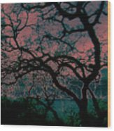 Sundown Wood Print