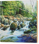 Sunfish Creek Wood Print