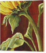 Sunflower - Sunny Side Up Wood Print