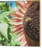 Sunflower 112 Wood Print