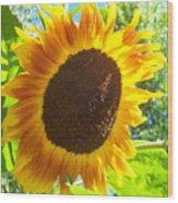 Sunflower 118 Wood Print
