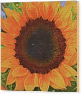 Sunflower 12118-3 Wood Print