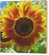Sunflower 140 Wood Print