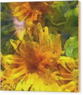 Sunflower 6 Wood Print