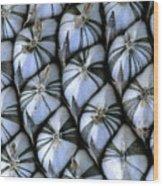 Sunflower-7 Wood Print
