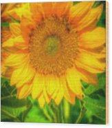 Sunflower 8 Wood Print