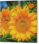 Sunflower 9 Wood Print