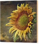 Sunflower Art 2 Wood Print