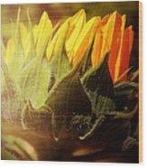 Sunflower Crown Wood Print