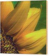 Sunflower Detail Wood Print