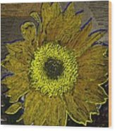 Sunflower Dreaming Wood Print