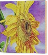 Sunflower Gold Wood Print