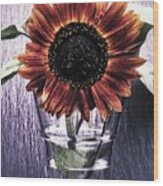 Sunflower In A Cup Wood Print