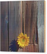 Sunflower In Barn Wood Wood Print by Garry Gay