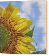 Sunflower In The Clouds Wood Print