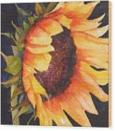 Sunflower Wood Print by Karen Stark
