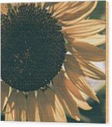Sunflower Matte Wood Print
