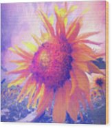 Sunflower Oil Painting Wood Print