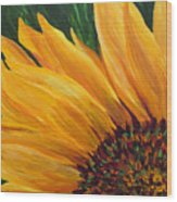 Sunflower Oil Painting Wood Print