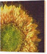 Sunflower Pencil Wood Print