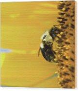 Sunflower Pollen Wood Print