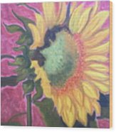 New Mexico Sunflower Wood Print