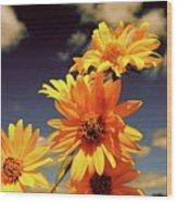 Sunflower Skies Wood Print