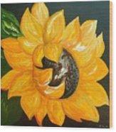 Sunflower Solo Wood Print