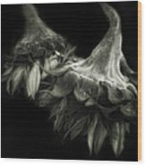 Sunflower Tango Wood Print