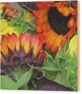 Sunflower2 Wood Print