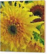 Sunflowers - Light And Dark Wood Print