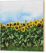 Sunflowers 2 Wood Print