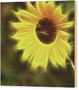 Sunflowers-4986-fractal Wood Print