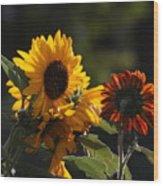 Sunflowers 8 Wood Print