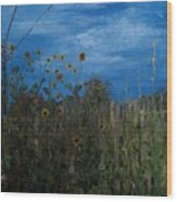 Sunflowers And Corn With Lines Wood Print