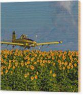 Sunflowers And Crop Duster Wood Print