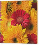 Sunflowers And Red Mums Wood Print by Garry Gay