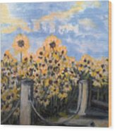 Sunflowers At Rest Stop Near Great Sand Dunes Wood Print