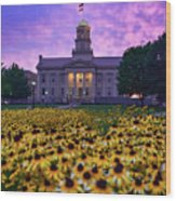 Sunflowers At The Old Capitol Wood Print