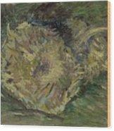 Sunflowers Gone To Seed Paris, August - September 1887 Vincent Van Gogh 1853  1890 Wood Print