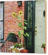 Sunflowers On Stoop Wood Print