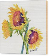 Sunflowers On White Wood Print