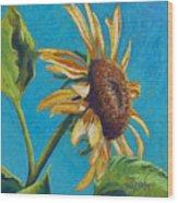 Sunflower's Shine Wood Print
